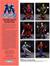 1993 ERTL Brochure